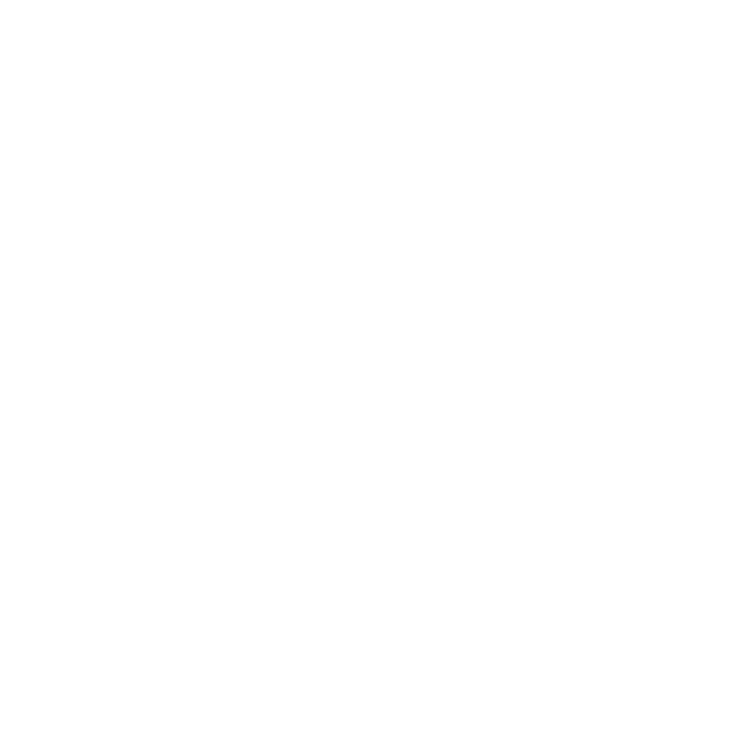 nimt website logo